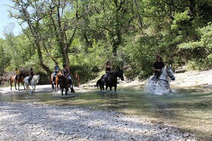 centre equestre Mont Ventoux